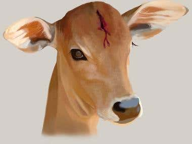 Save cows