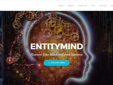 Create WordPress Landing page for Entitymind.com