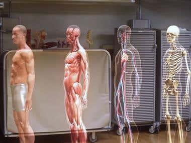 HoloLens Human Anatomy