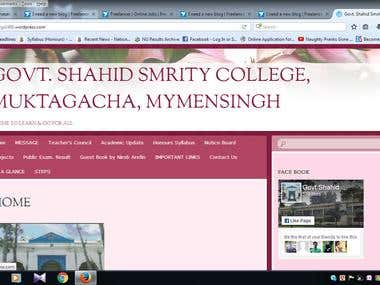 Govt. Shahid Smrity College
