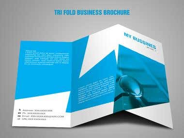 Tri Fold Business Brochure