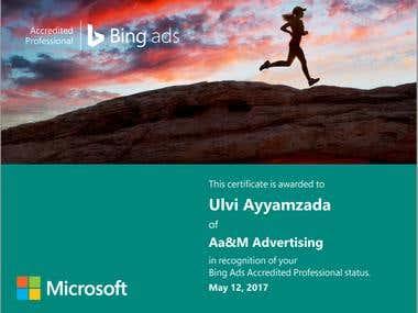 Microsoft Bing Ads Certificate