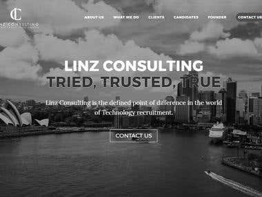 Linz Consulting website design