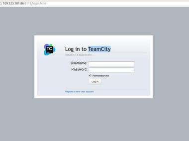 TeamCity Developer