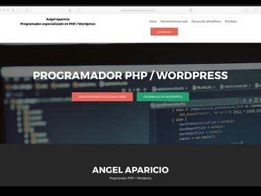 Angel Aparicio Programador