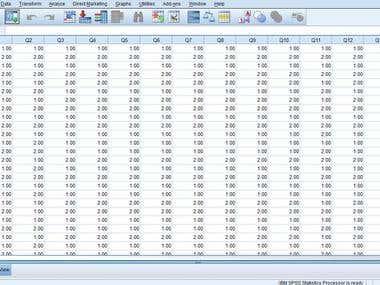 SPSS data input