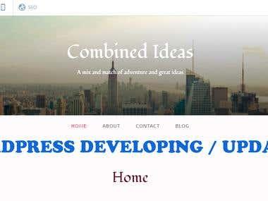 Wordpress Developing/Updating