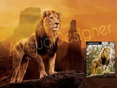 Digital photo editing / Photomanipulation