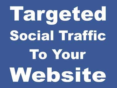 2,75,000+ Targeted Social Traffic to your Website