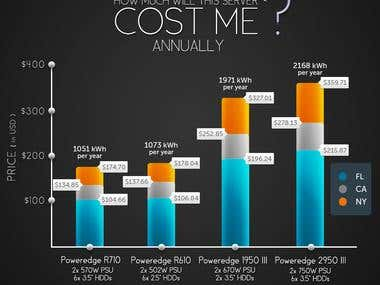 Infographics about annual server cost