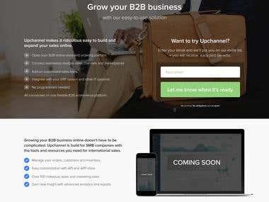 Wordpress + Logo Designs + ASP.net + Amazon + Ebay