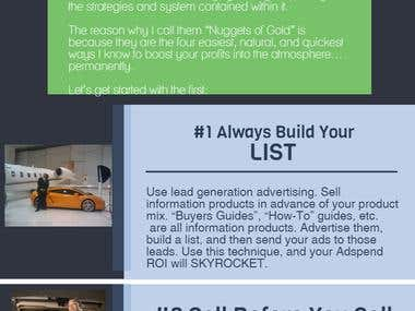 Infographic Marketing Asset