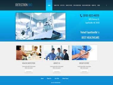 Wordpress Website with professional code