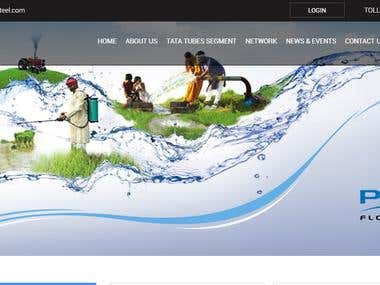 Customizable Web Portal with Informative Website Development