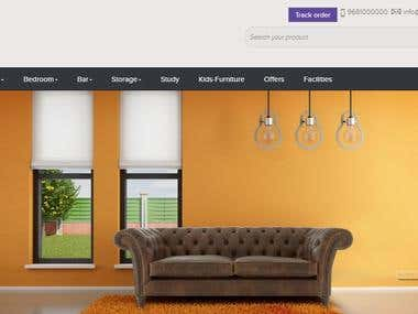 Ecommerce Website Design and Developement