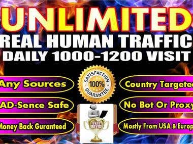 Drive Web Traffic Daily