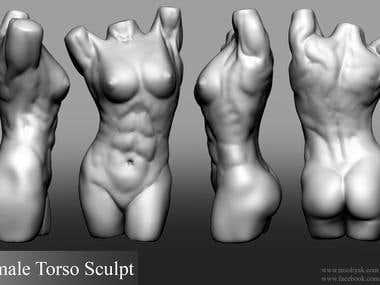 Female Torso - ZBrush Sculpt