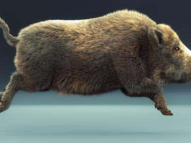 Rendered in V-ray. Realistic hair and fur