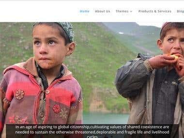 WordPress NGO Site