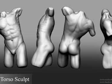 Male Torso - ZBrush Sculpt