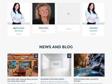 Real Estate Wordpress Webiste