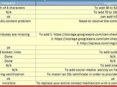 Site Audit Report