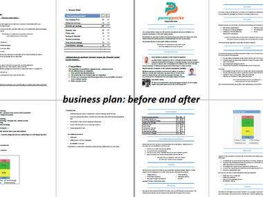 PennyPacke Business Plan: Before and After