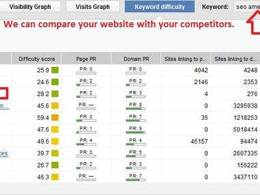 Compare your site with competitors.