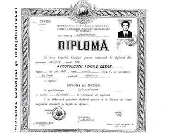 Bachelor Degree:Engineer