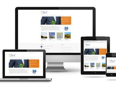 I will do a professional and responsive web desgin