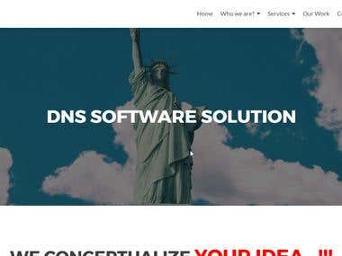 DNS Software Solution