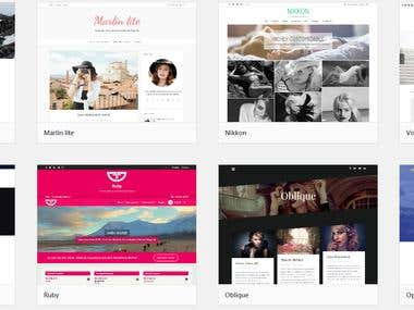 Profesional Wordpress Themes