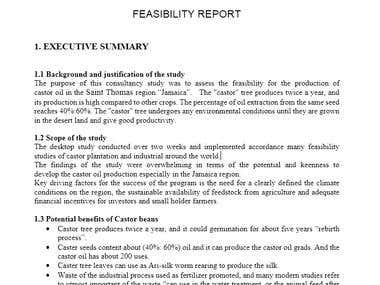 Feasibility study and detailed engineering