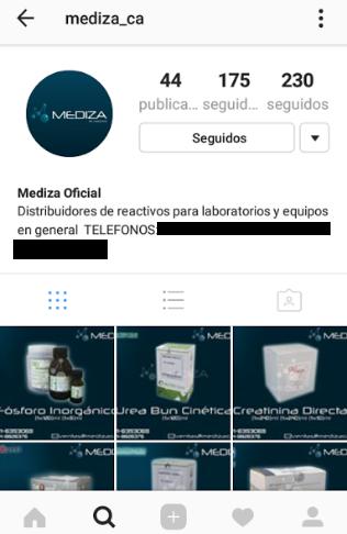 Company's Instagram Profile