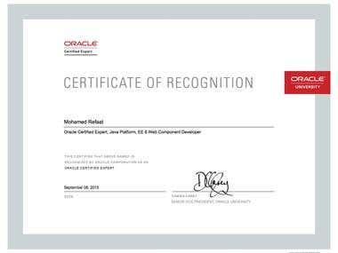 Oracle Certified Expert, Java Platform, EE 6 Web Component D
