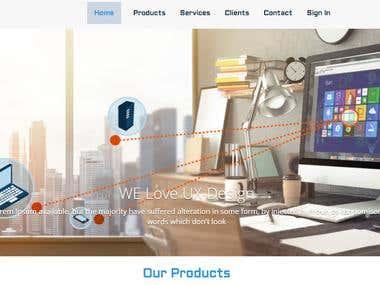 WP Theme Development