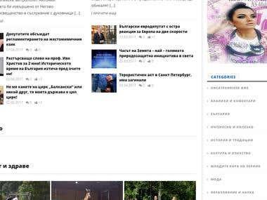 WordPress News/Blog Website