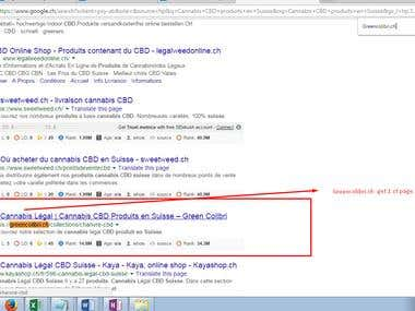 Get first page ranking at google.ch