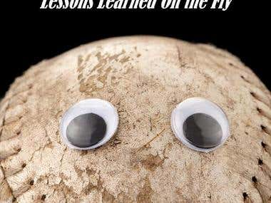 The Art of Sales Management: Lessons Learned on the Fly