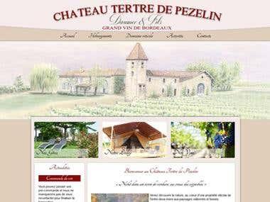 Chateau du tertre de Pezelin