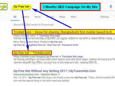 3 Months SEO Campaign On My Site - (Google)