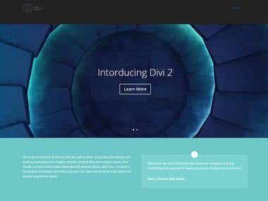 Divi WordPress theme customization