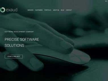 Exaud: Software Development and Consulting Company
