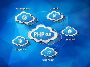Expert in Website Development using PHP CMS