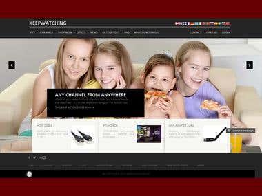 WordPress website optimize and develop