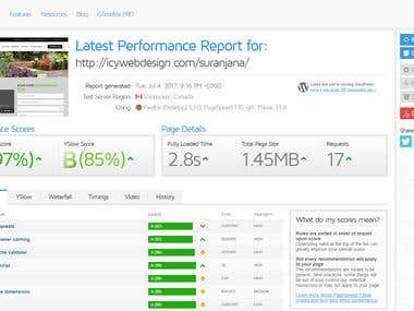 Website optimize and speed up
