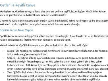 Turkish Article