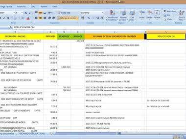 Accounting assistant + Wordpress VA
