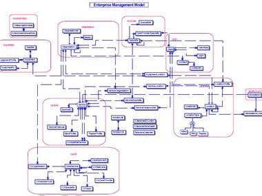 Healthcare- Enterprise Management Model