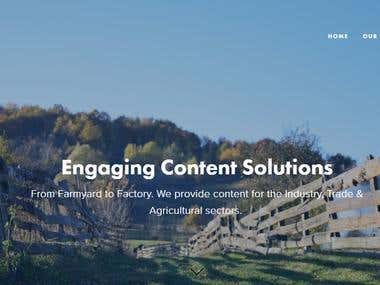 The Content Group Website
